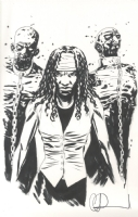 Charlid Adlard Walking Dead Michonne Sketch, Comic Art