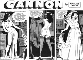 Cannon C 103 (top half) by Wallace Wood Comic Art