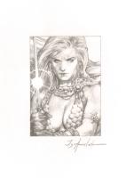 Red Sonja Sketch Comic Art