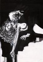 Bill Sienkiewicz Vampyres Portfolio Cover Nude Comic Art