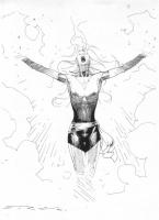 Esad Ribic Phoenix Comic Art