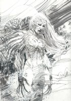 Witchblade Pin-Up Comic Art