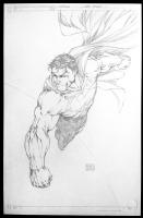 Superman #205 by Michael Turner Comic Art
