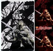 Red Sonja #16 (variant cover) Comic Art