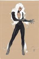 Black Cat Commission - Adam Hughes Comic Art
