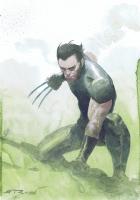 Wolverine Colour Convention Commission by Esad Ribic Comic Art