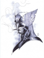 Wolverine by Stephen Platt Comic Art