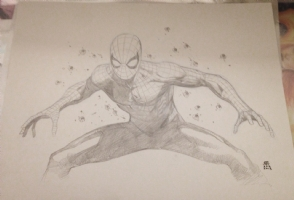 C2E2 Spiderman Sketch by Jim Cheung, Comic Art