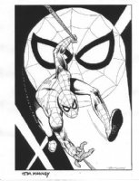 Amazing Spider-Man Comic Art