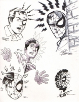 Spider-Man/Peter Parker sketches by Chris Moreno, Scott Kolins, Tony Fleecs, Andy Kuhn, & Phil Hester Comic Art