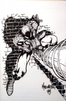 Joe Madureira - Spider-Man Pin-Up (art only) Comic Art