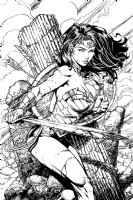 Wonder Woman Cover #1 David Finch and Richard Friend CC22 artist alley SDCC Comic Art