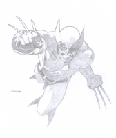 Wolverine - Ryan Sook Comic Art