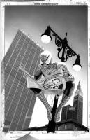 Mike Mayhew Original THE PULSE #3 B&W Cover Art Comic Art