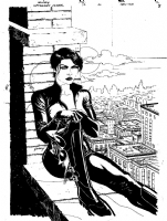 Catwoman 37 Comic Art