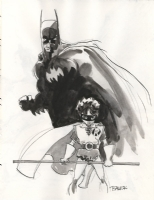 Batman and Robin by Tim Sale Comic Art