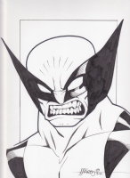 Wolverine by J.J. Kirby Comic Art