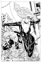 Spider-Man and Black Cat full body inked with background commission sample - Paulo Siqueira Comic Art