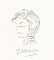 Catwoman by Darwyn Cooke Comic Art